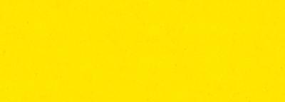 NO.5 鮮光黄