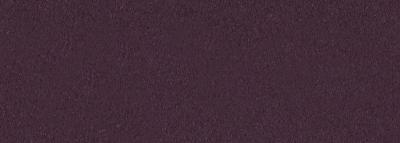 No.19 古代紫