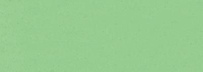 No.45 白緑