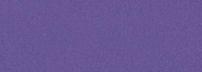 No.459 美紫